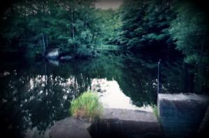 Juli1 2012, Hammarmölledamm! Foto Teresa Starkenberg