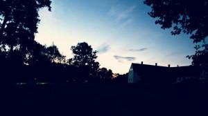 Juli 2012! Hovdalanatt är fladdermusnatt :) Foto Teresa Starkenberg